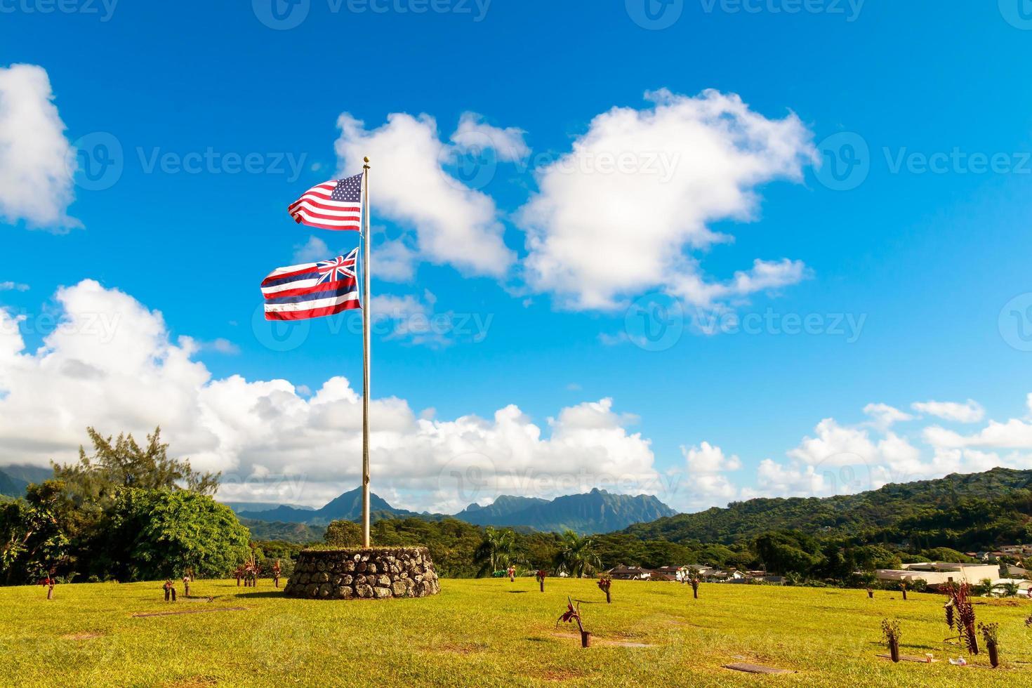 hawaiian & usa flagga i oahu foto