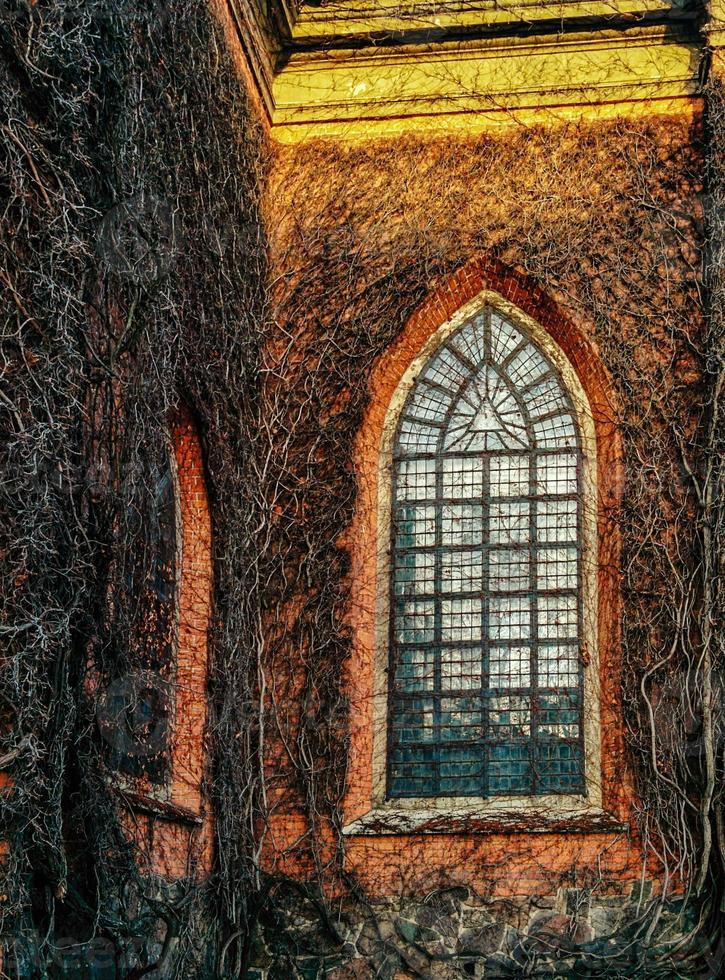 murgröna kyrka foto