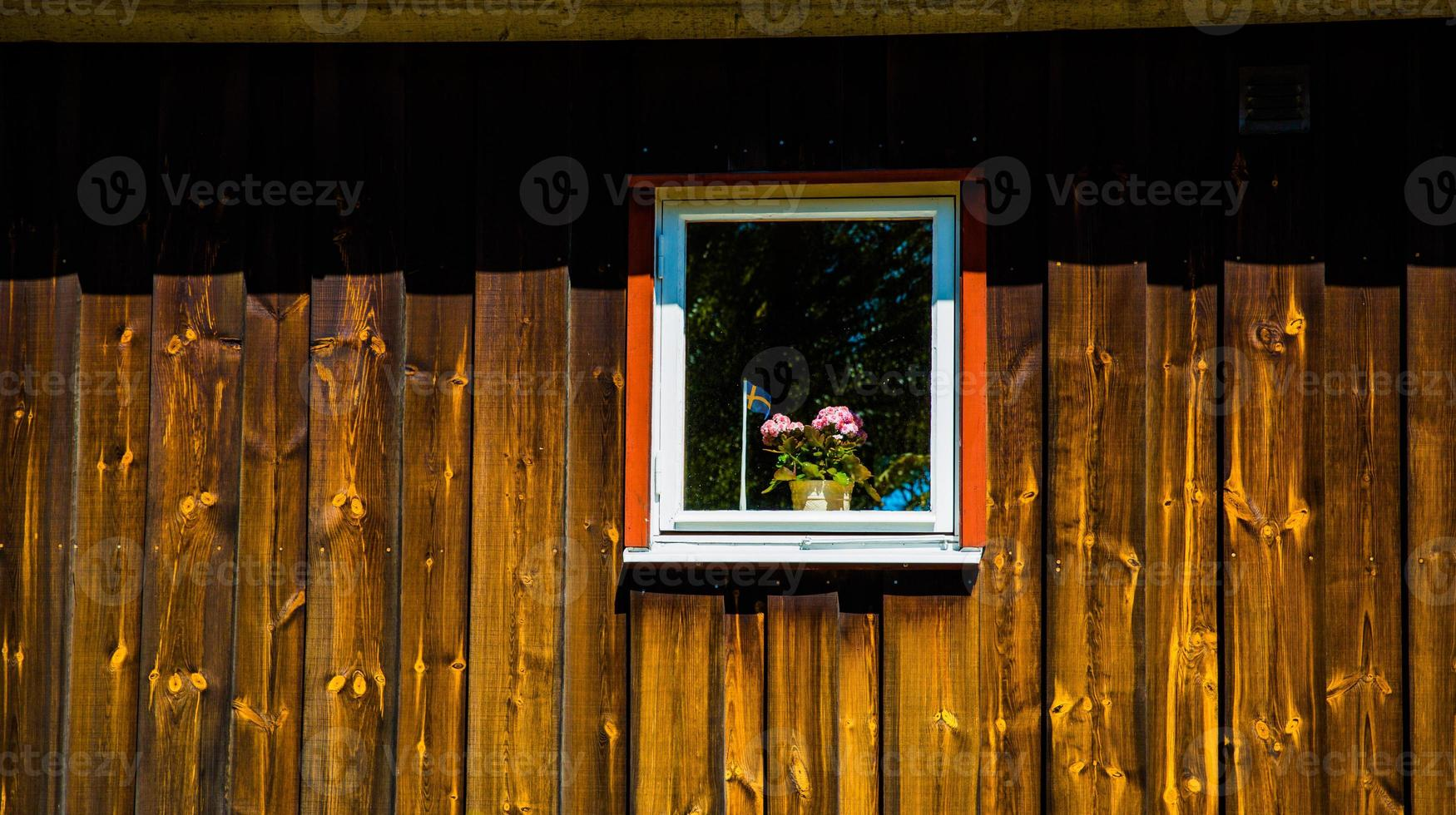 fönster foto