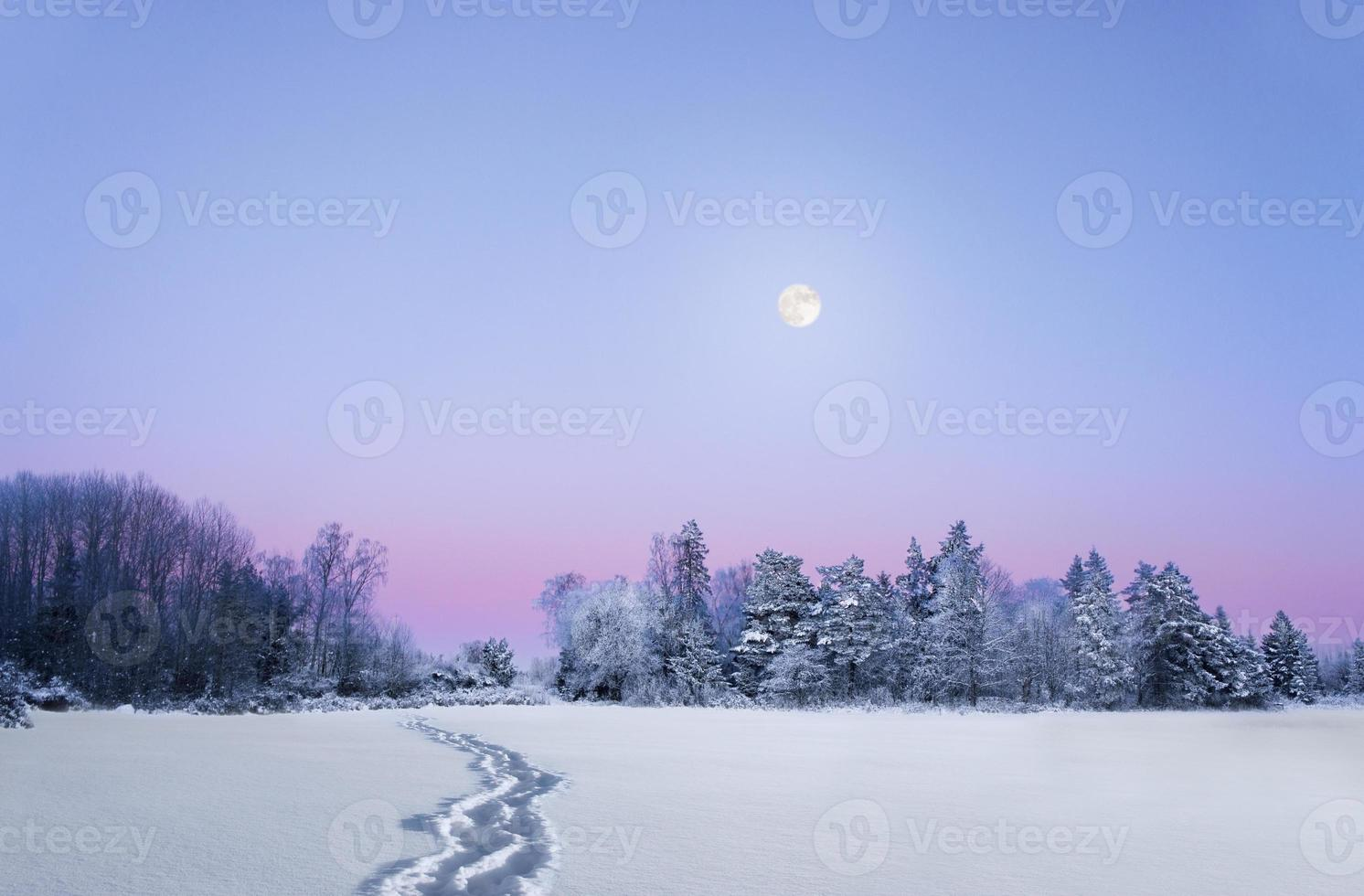 kväll vinterlandskap med fullmåne foto