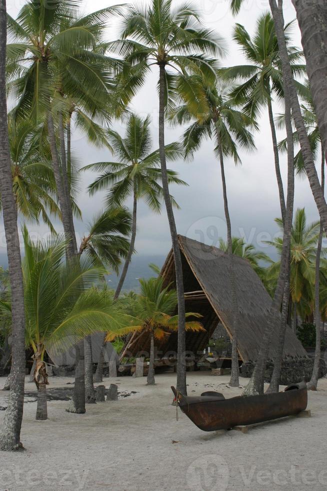 plats för tillflyktsort Hawaii foto