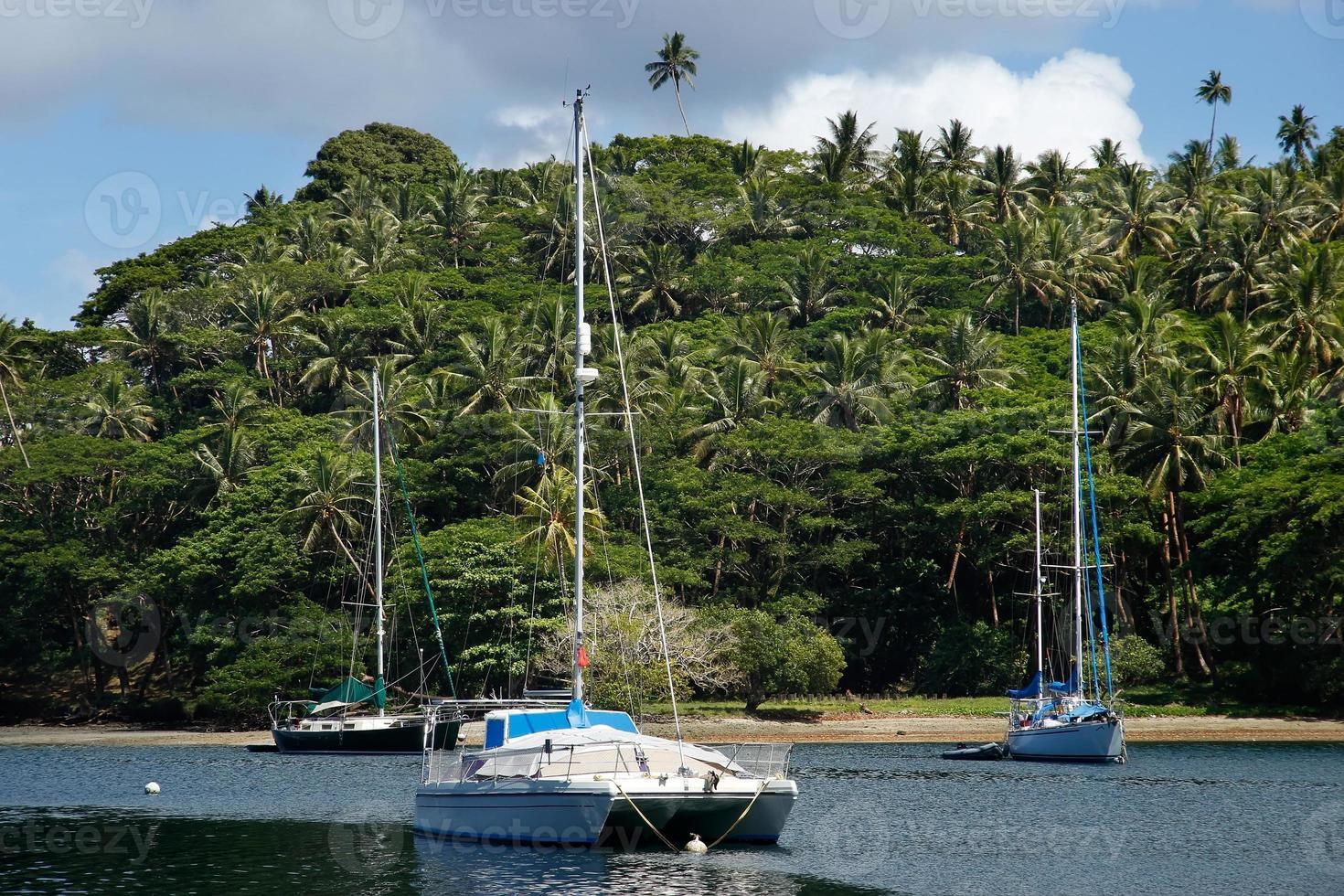segelbåtar vid savusavu hamn, vanua levuön, fiji foto