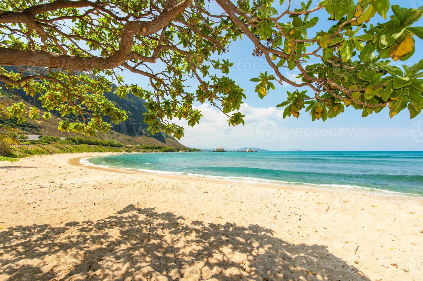 hawaiian strand med sand och berg bakgrund foto
