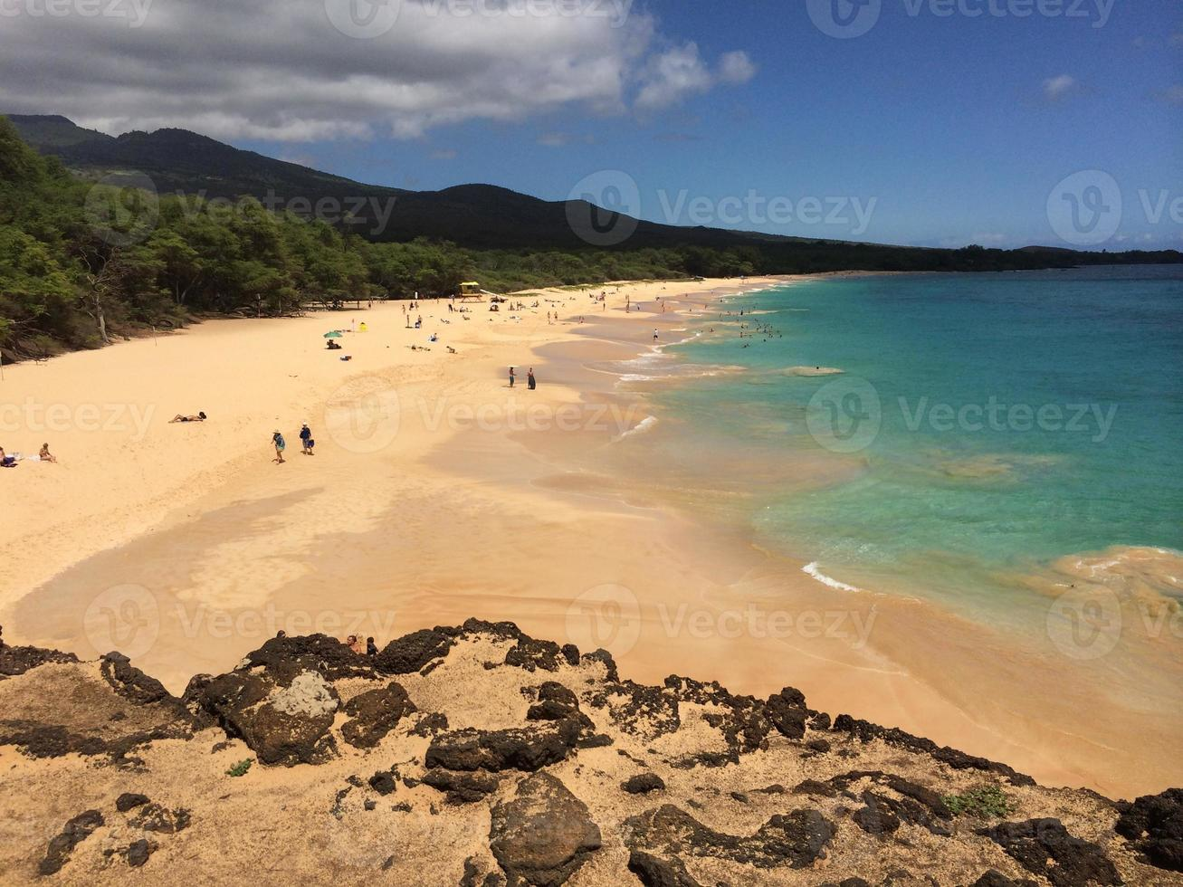 stor strand, maui foto