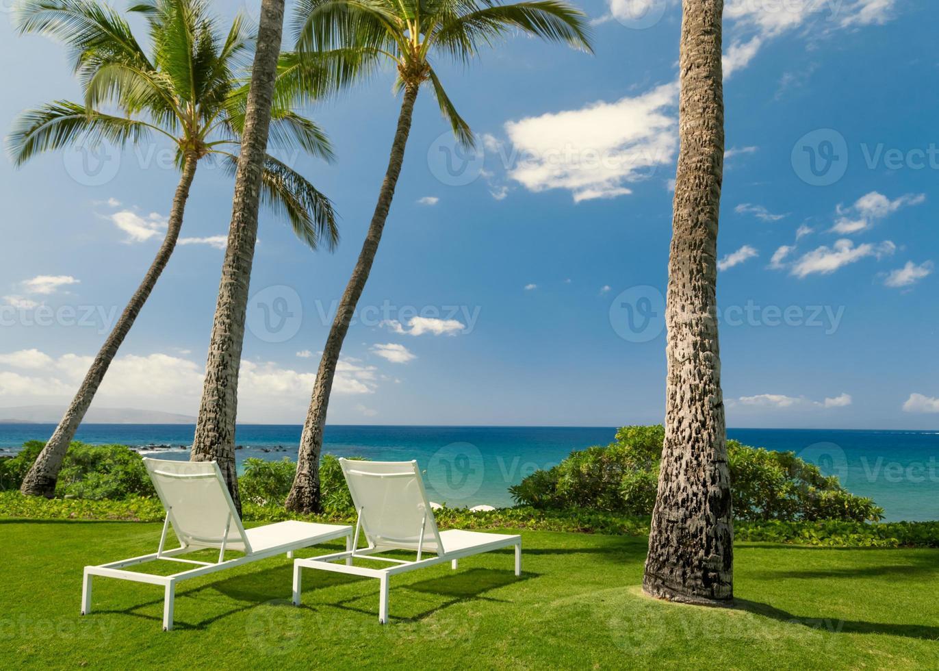solig tropisk strand foto