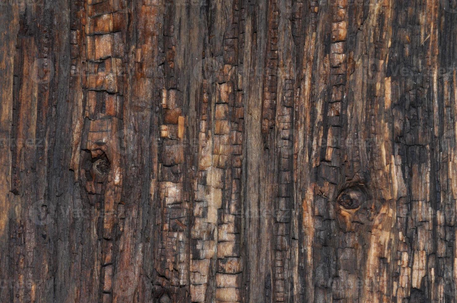 strukturen på det gamla brädet foto