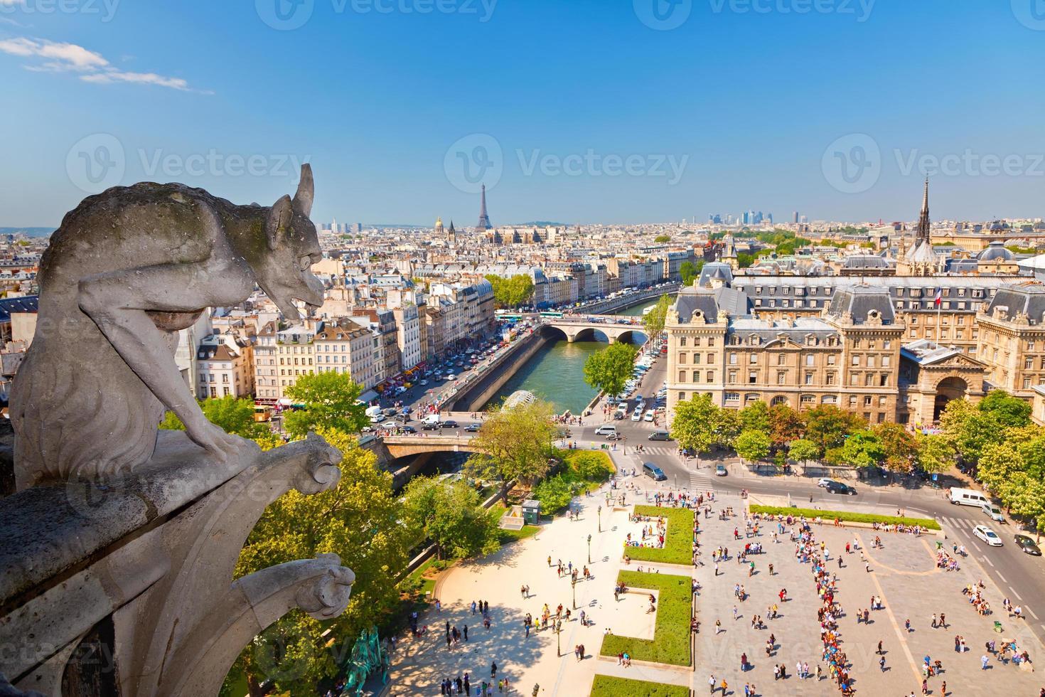 gargoyle på Notre Dame domkyrka foto