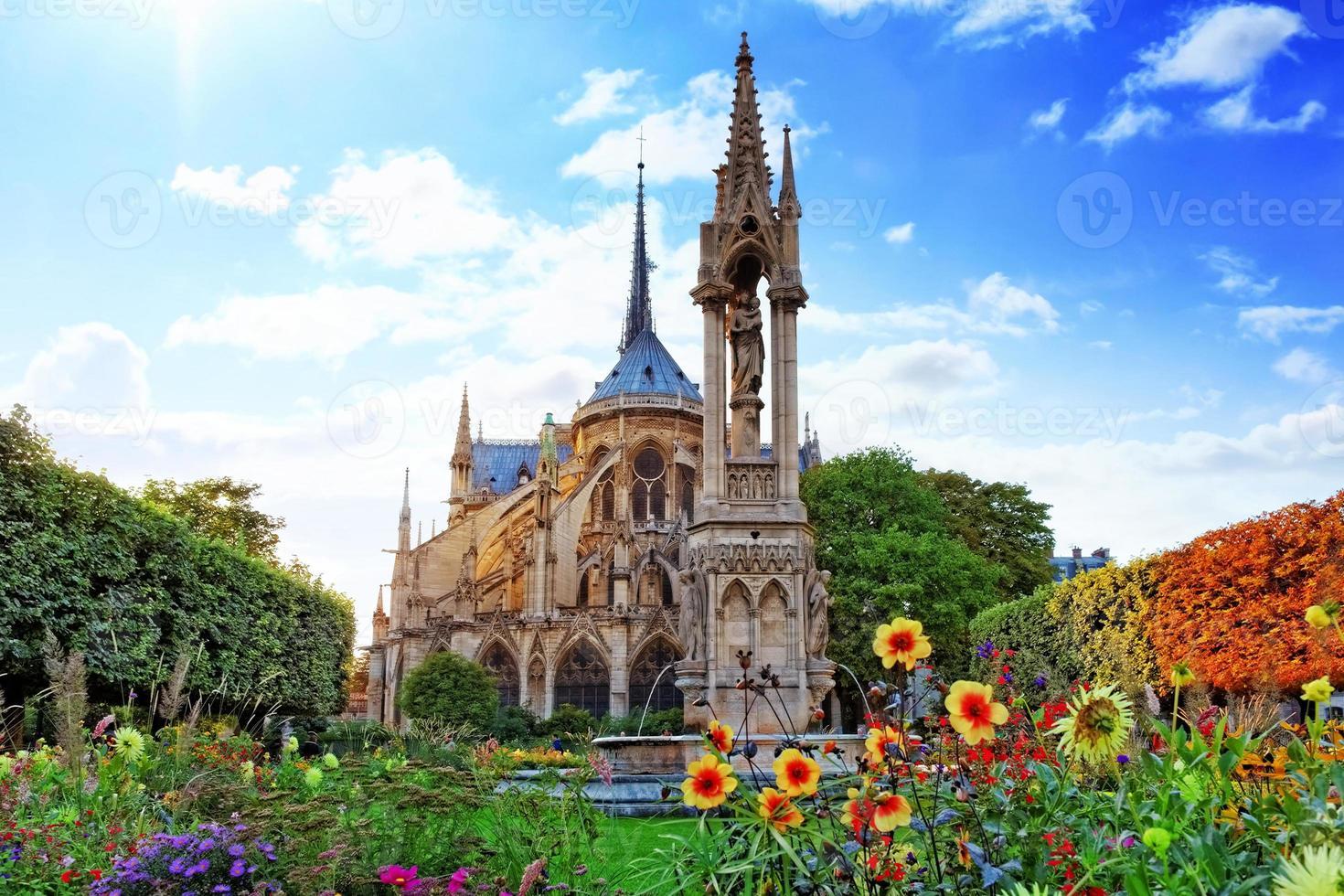 notre dame de paris katedral, trädgård med blommor. paris. Frankrike foto