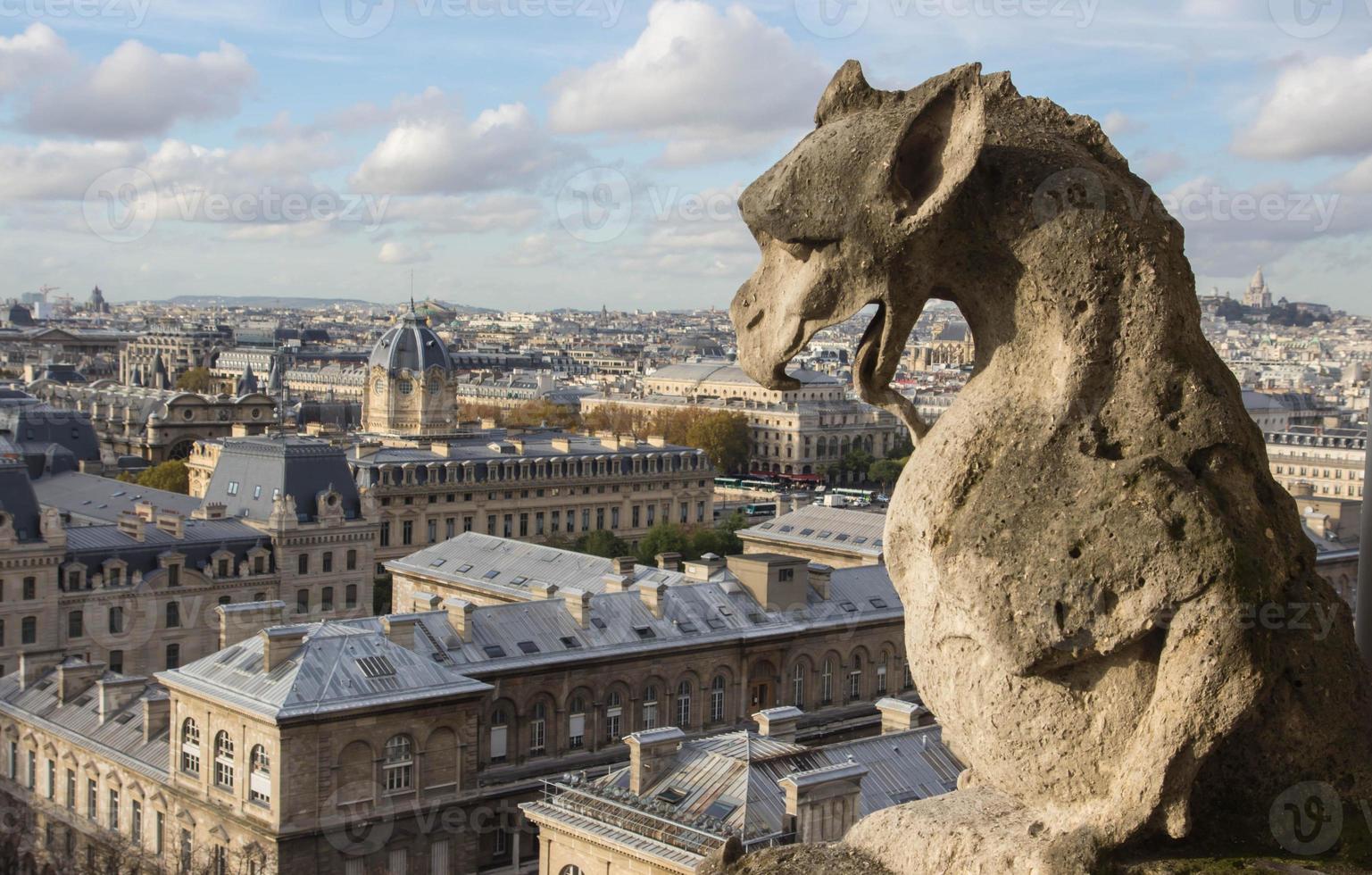 gargoyley över paris upplyst med kvällssolen foto