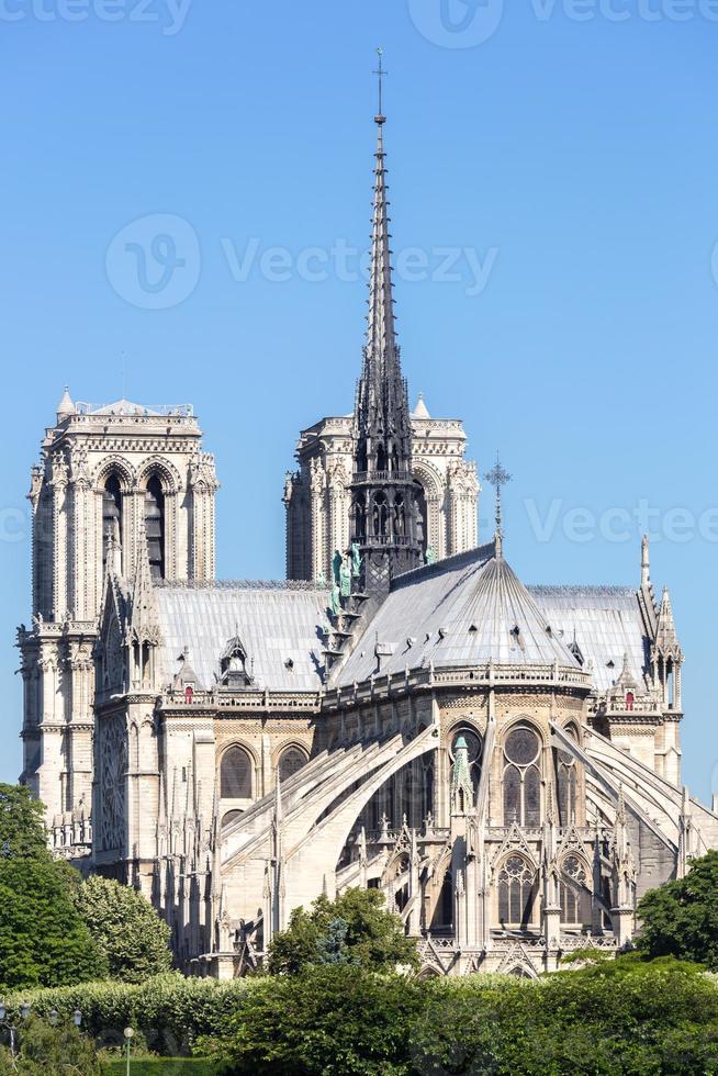 katedralen Notre Dame Paris foto