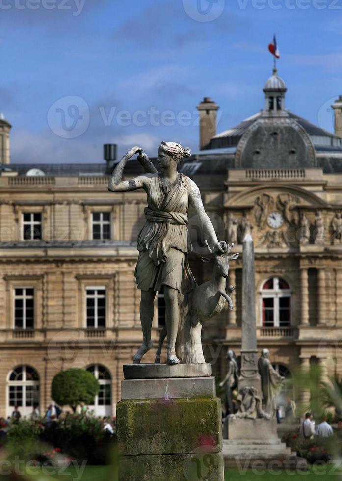 luxemburg trädgårdar, Paris, Frankrike foto