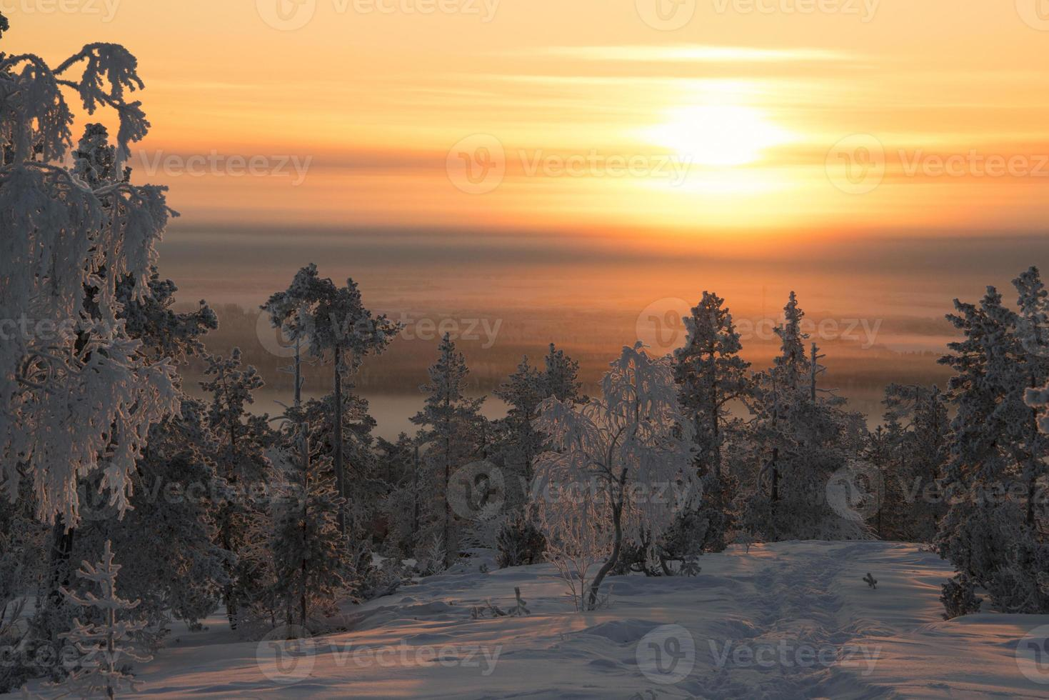 gyllene soluppgång över en frigid laplandsbacke foto