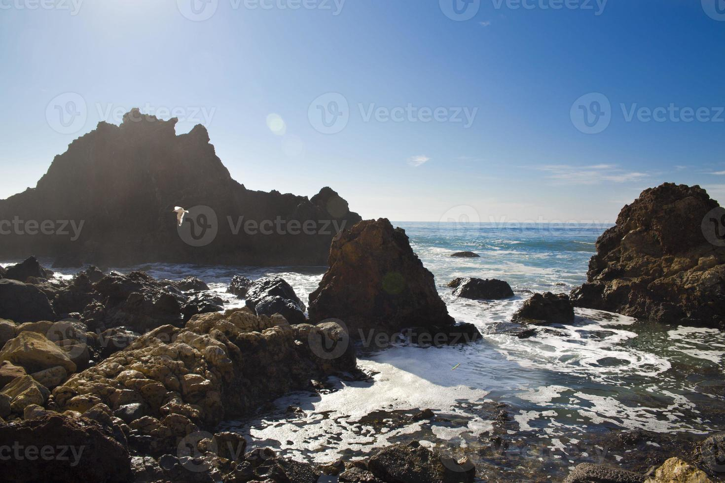 havsstrand foto