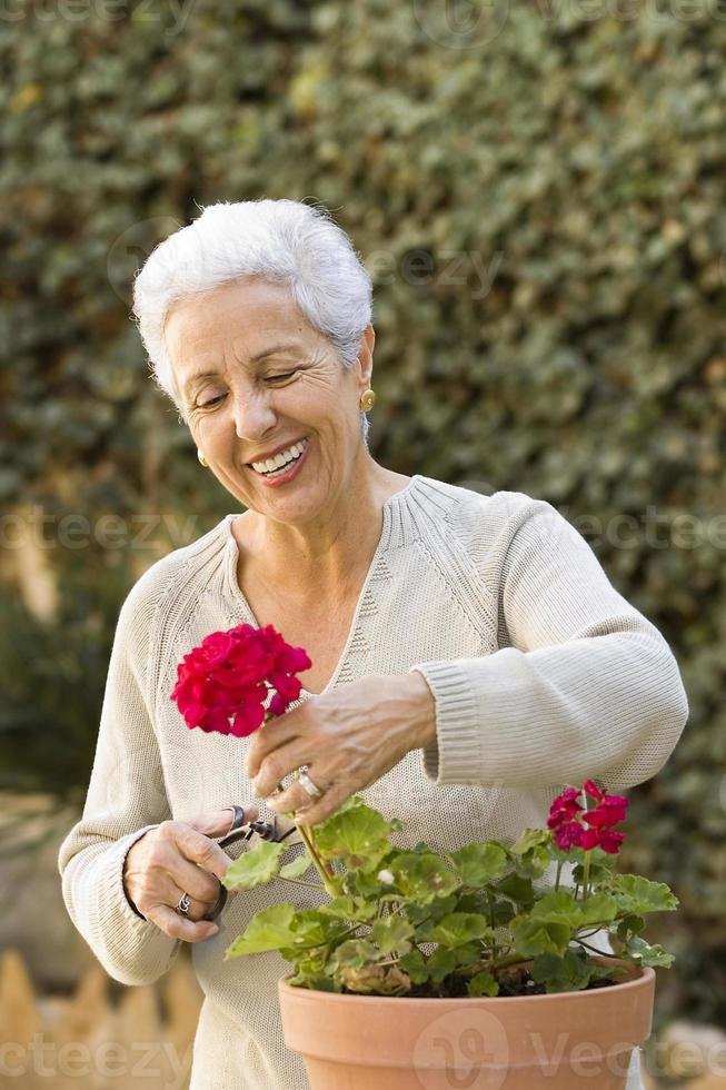 äldre dam som beskär sina växter foto