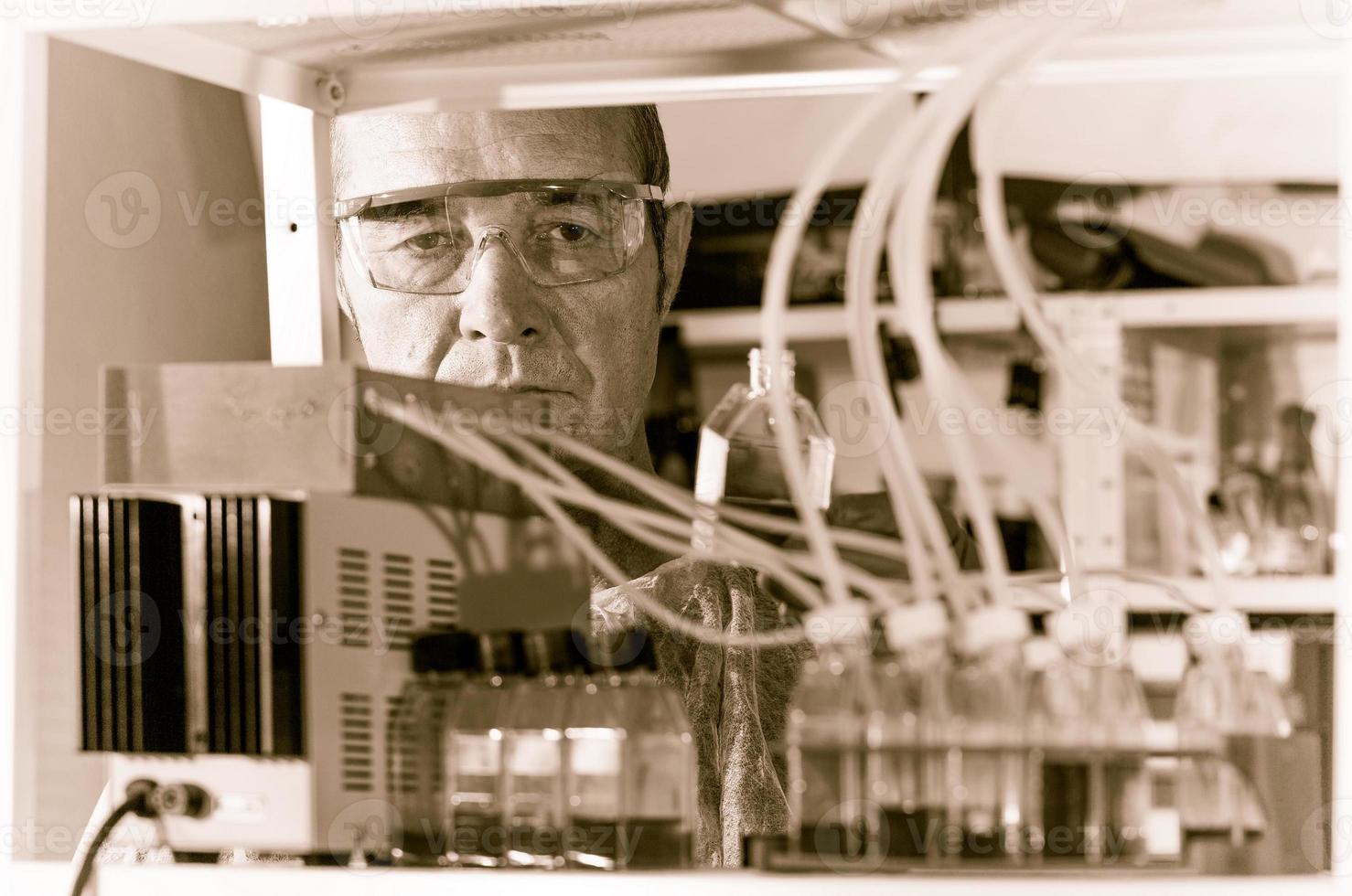 kontrollera uppkomst av cellkulturinstallation foto