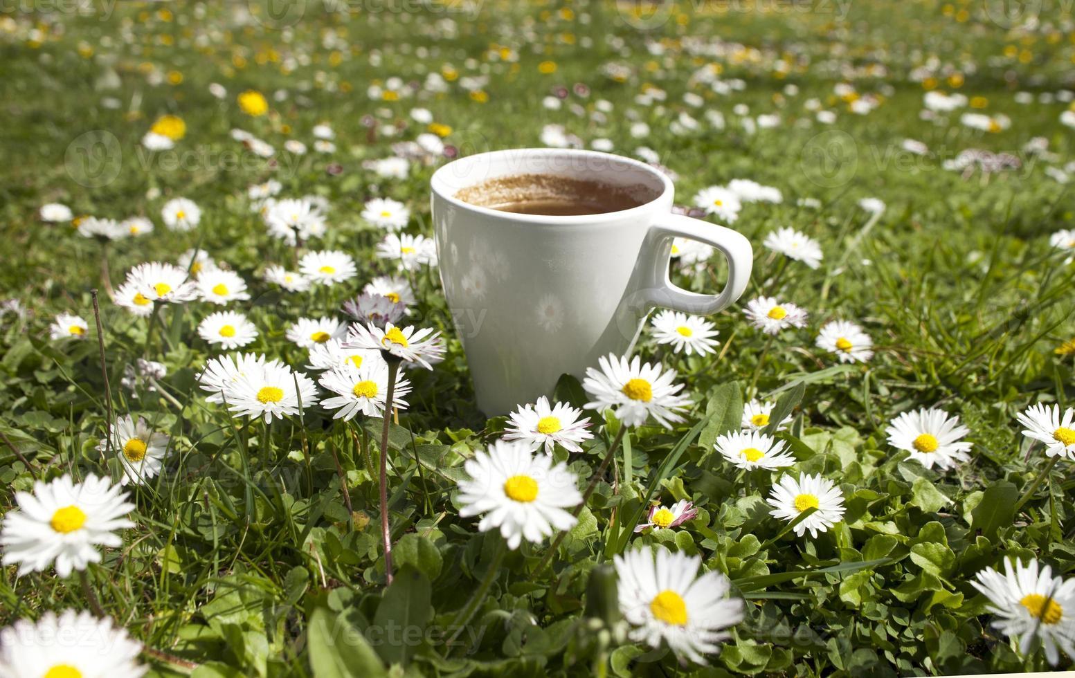 kaffemorgon foto