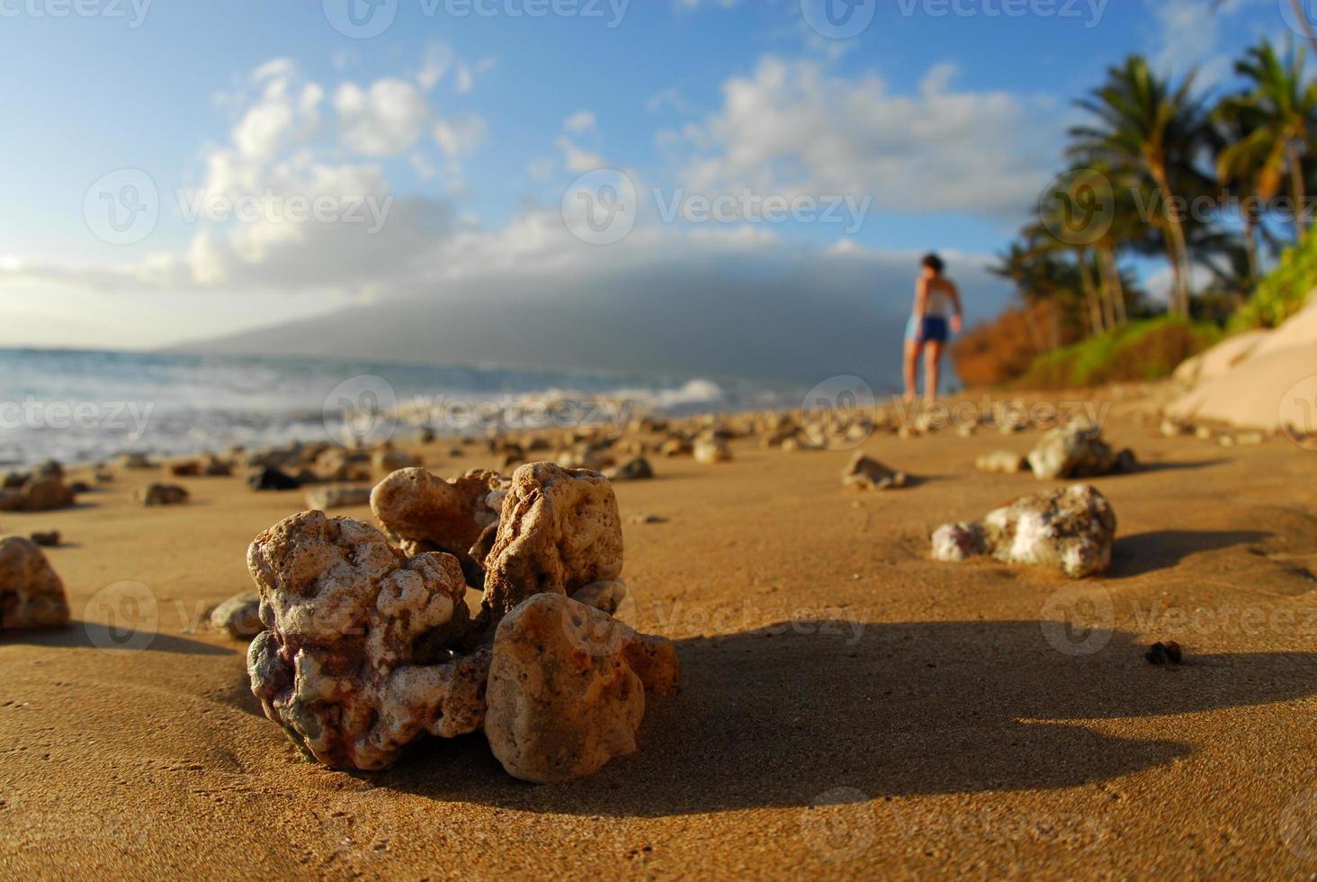 korall och flicka i paradiset foto