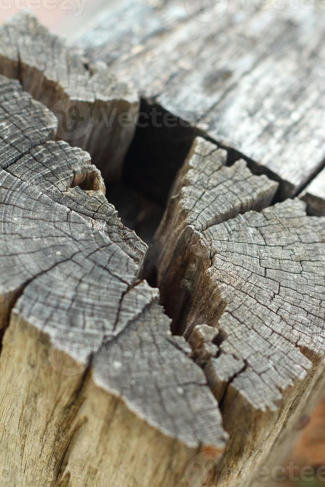 hål i träbakgrund foto
