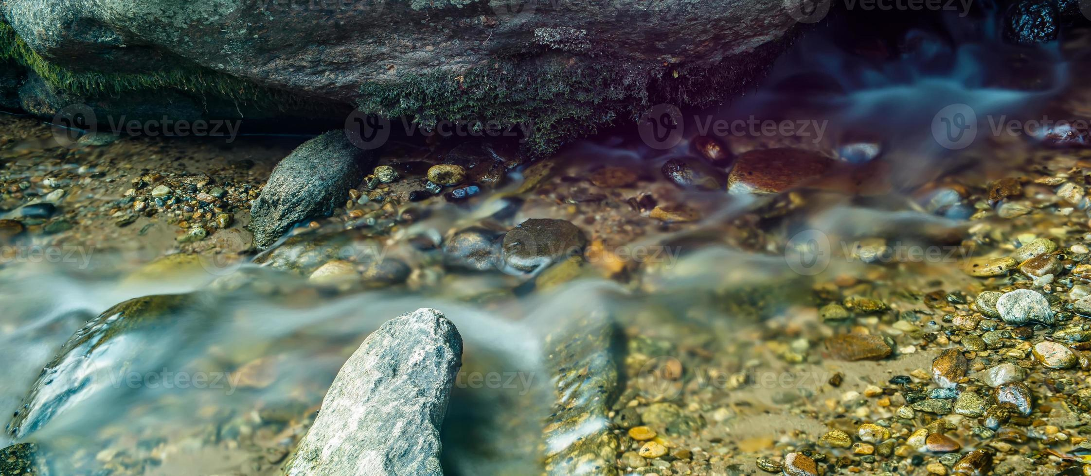 bred flod som rinner genom skogsbevuxen skog foto