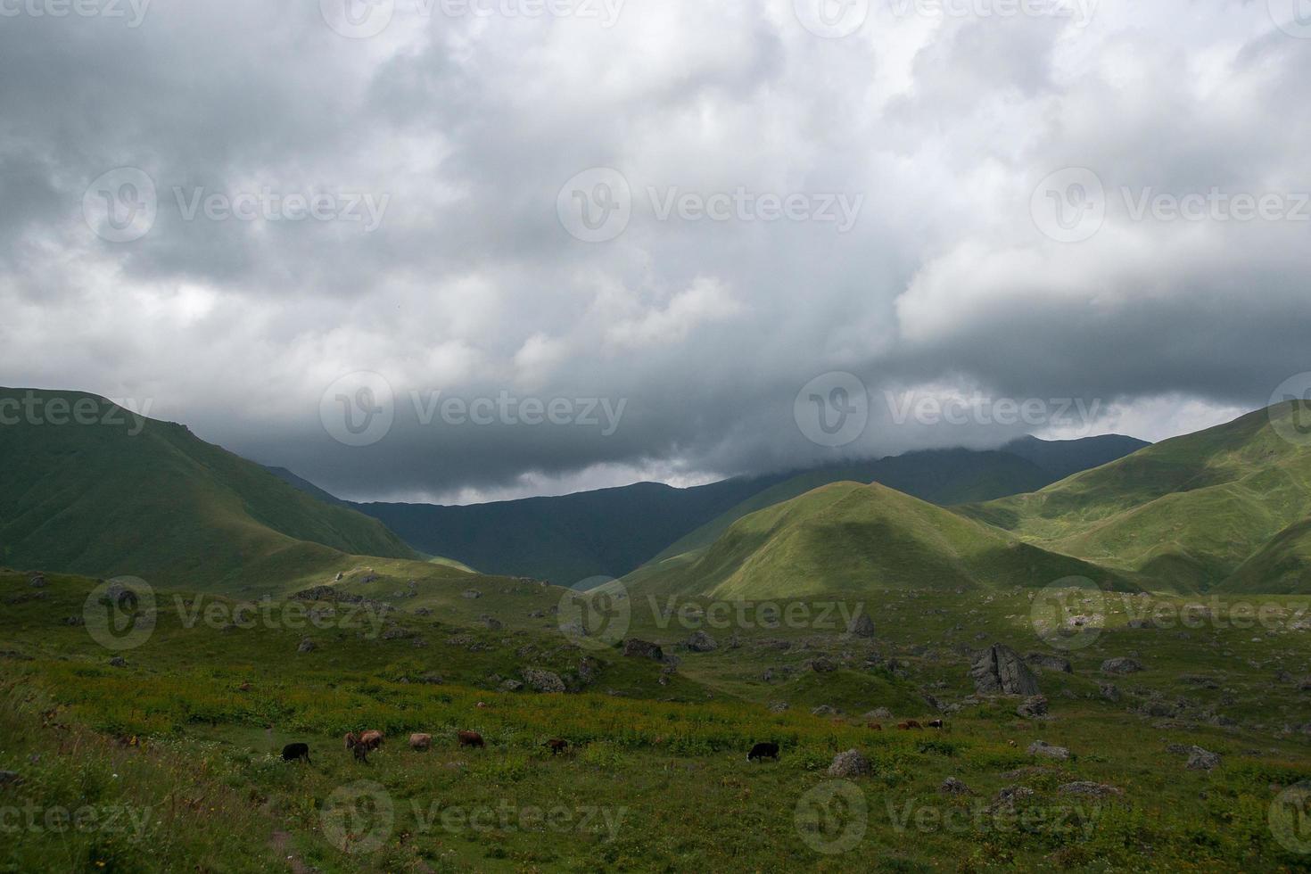 vandring i bergen foto