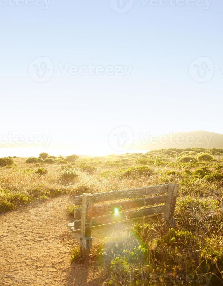träbänk på ett fält under solnedgången foto