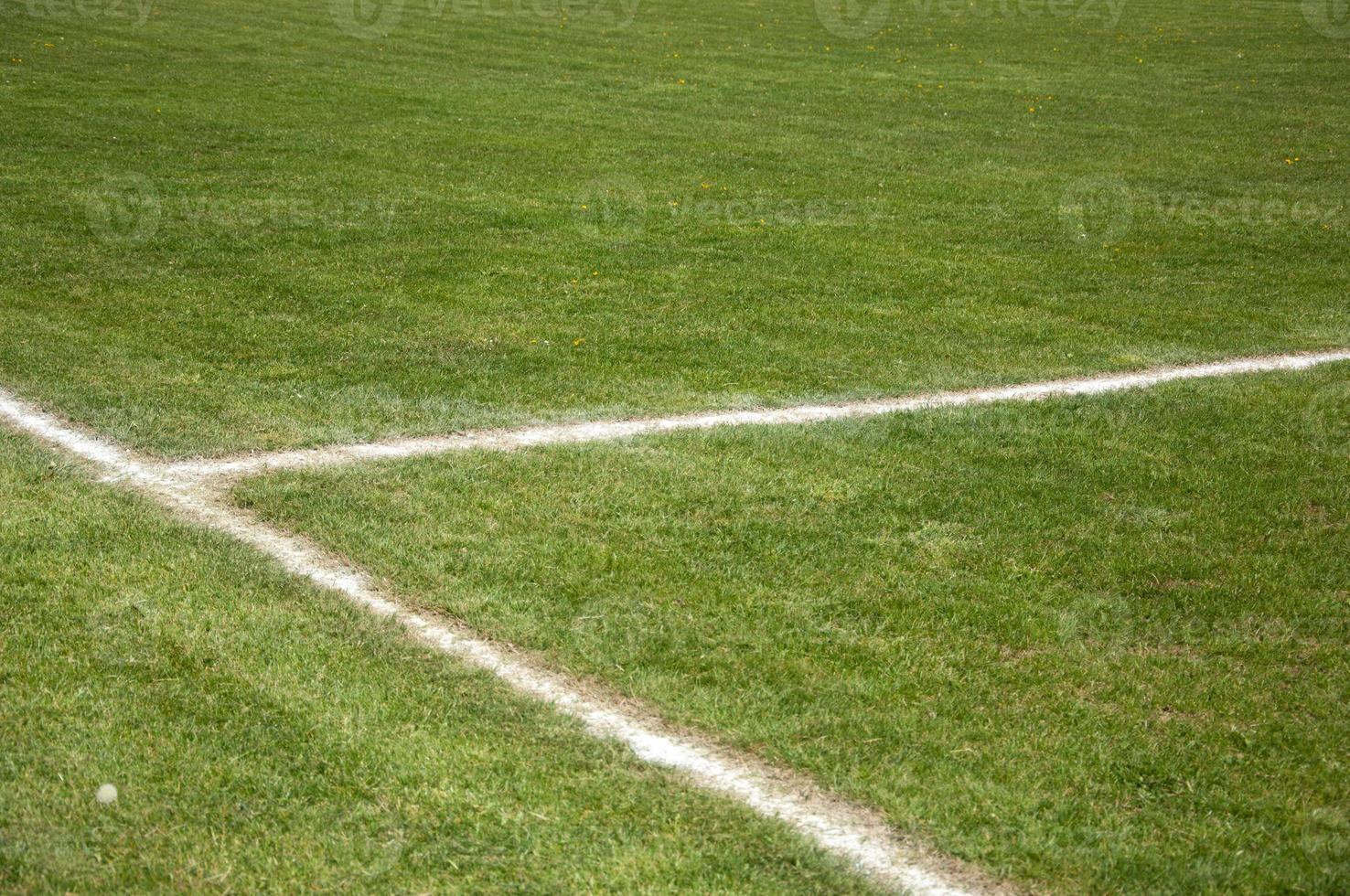 vita linjer på ett fotbollsplan foto