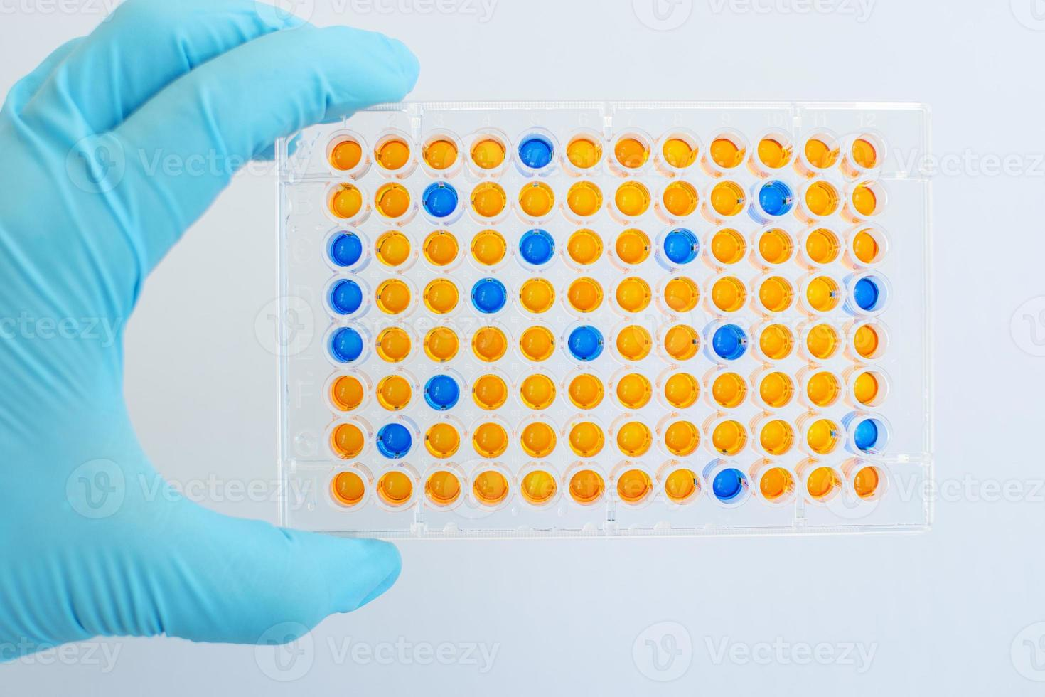 elisa mikroplatta foto