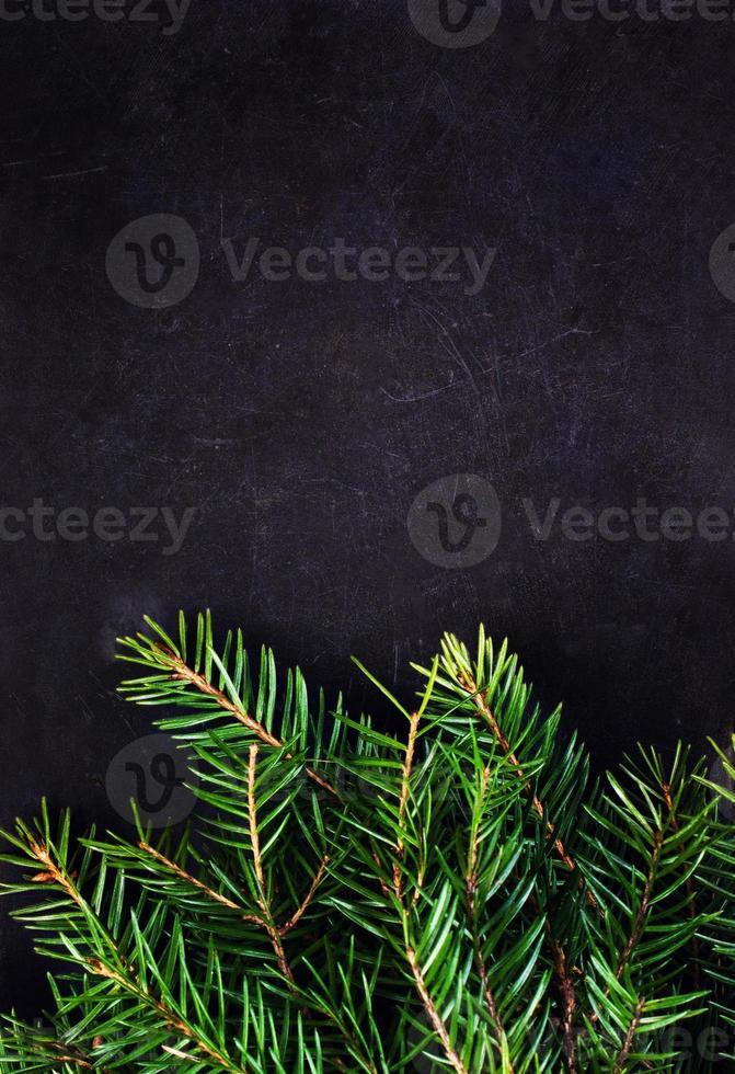 julgranfilial på tavlan med kopiautrymme för hälsning foto