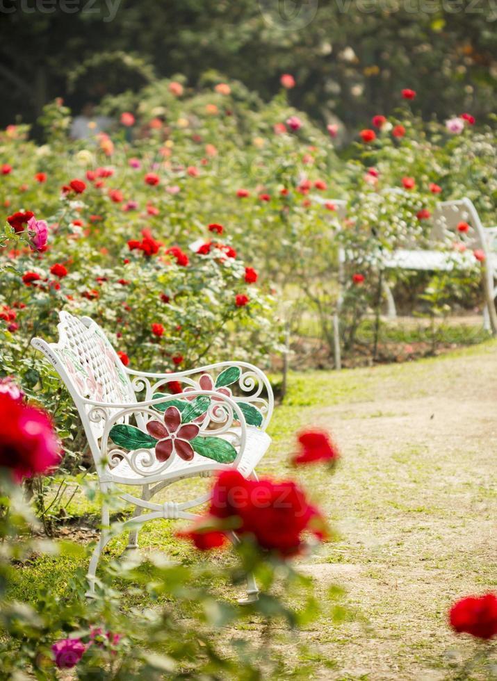 rosträdgård i avkopplande atmosfär foto