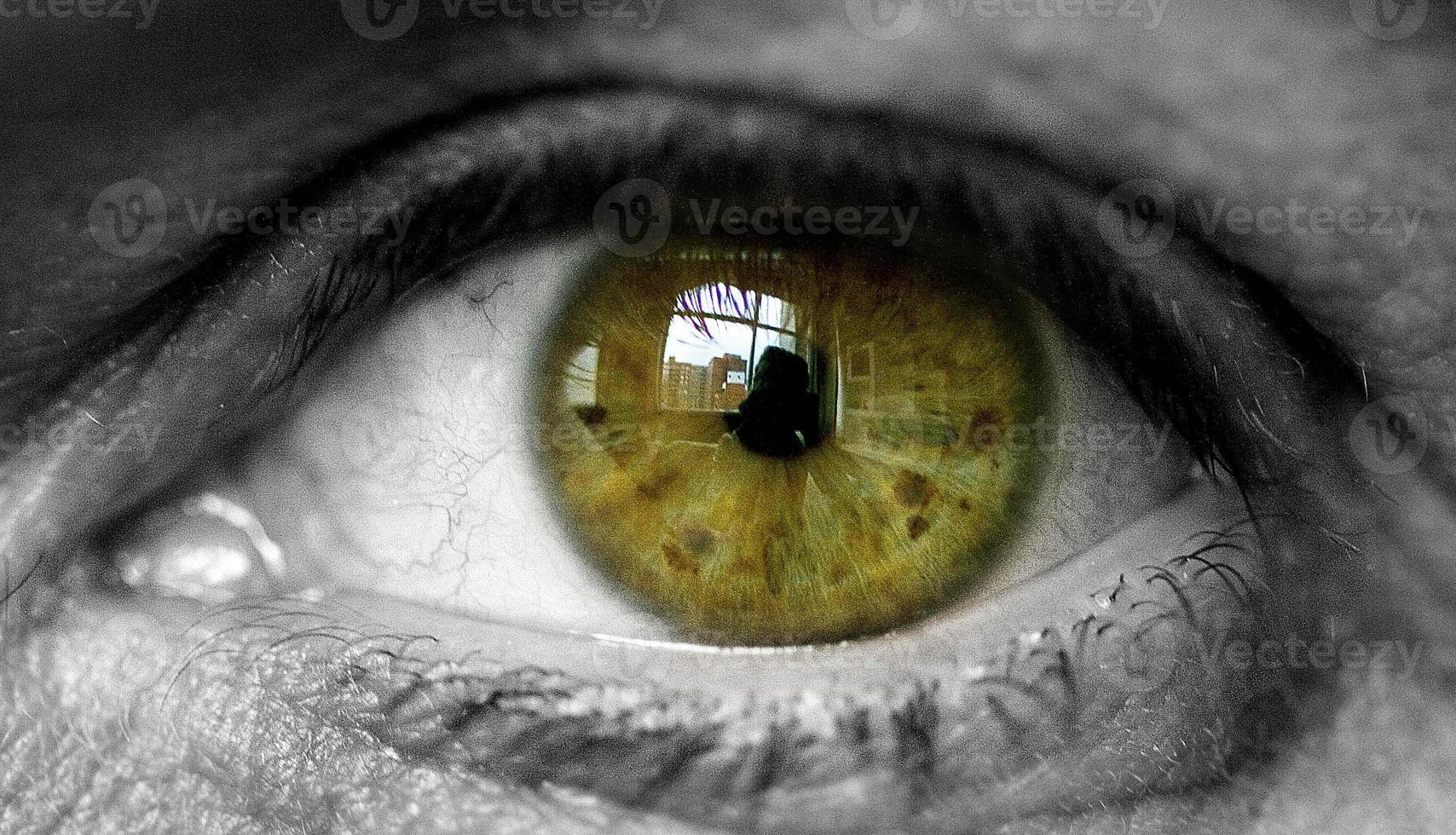 närbild grönt öga foto