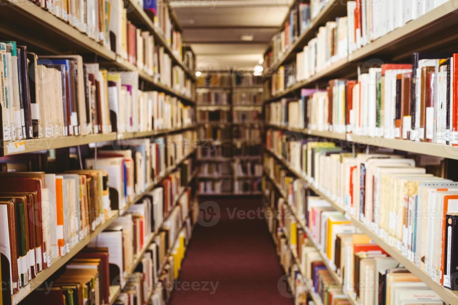 närbild av en bokhylla foto