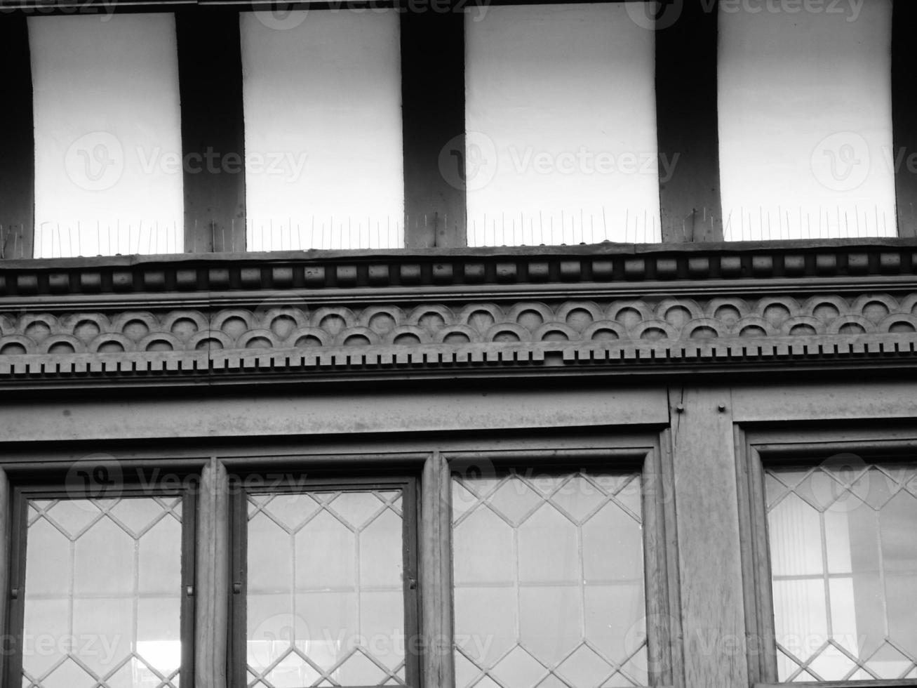 svartvit tudor chester foto