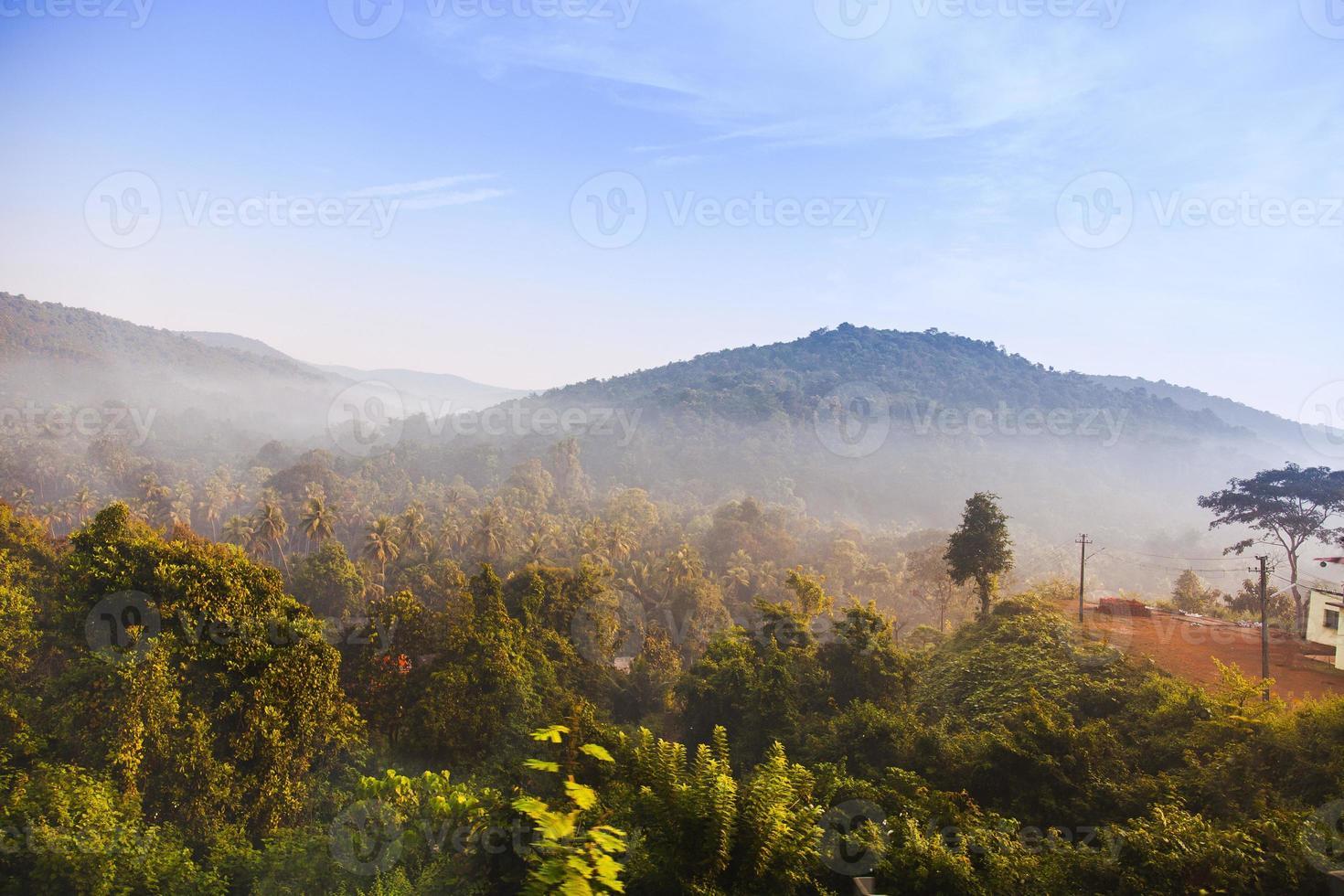 soluppgång i djungeln foto
