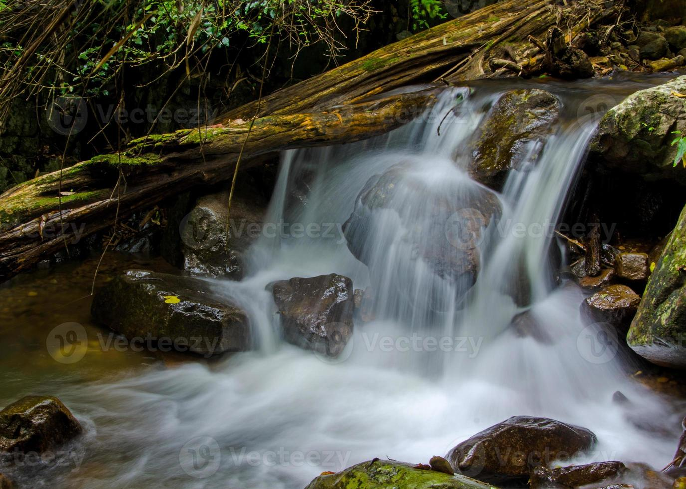 vattenfall i djup regnskogsjungel foto