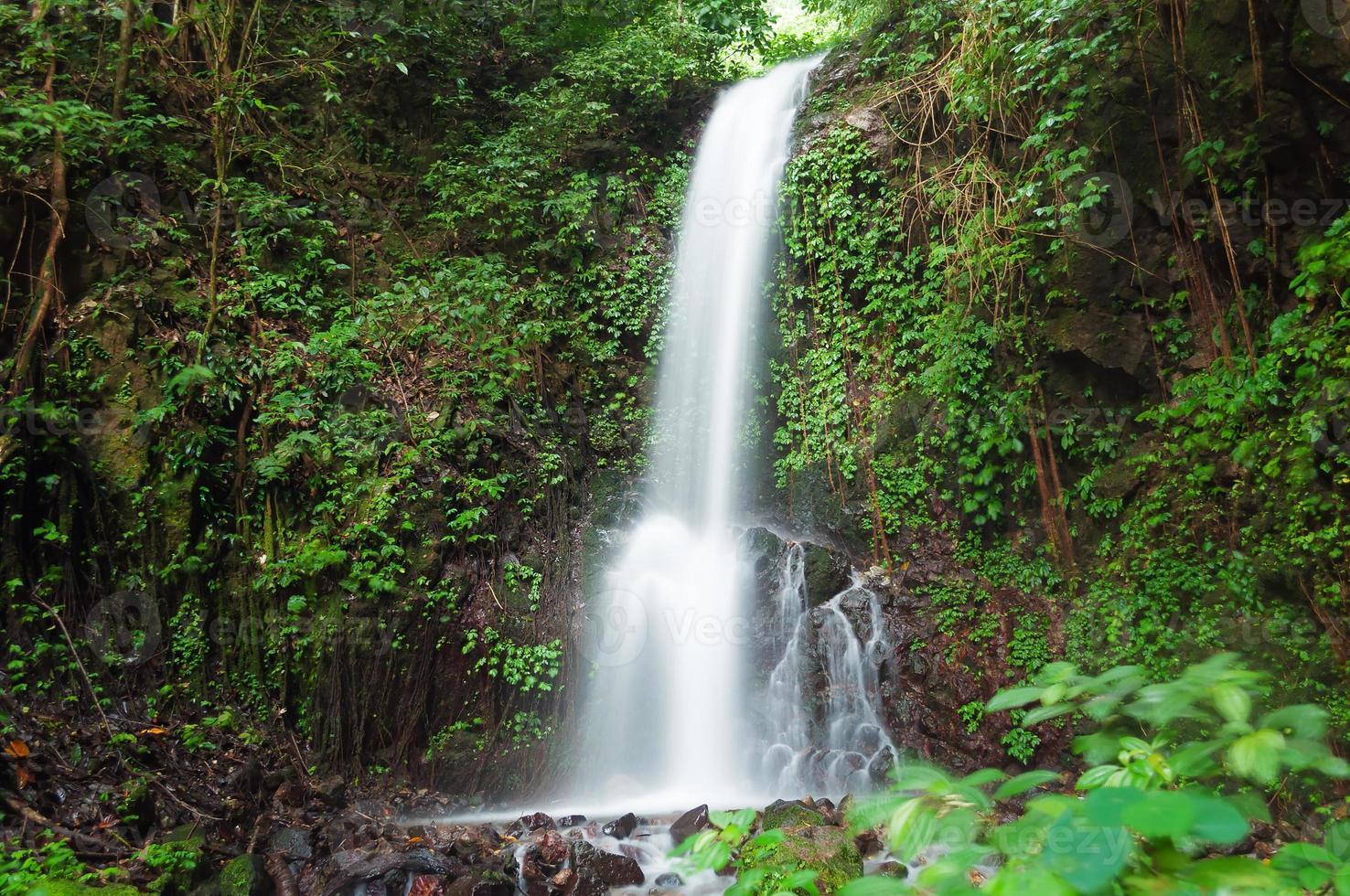 litet vattenfall i djungeln foto