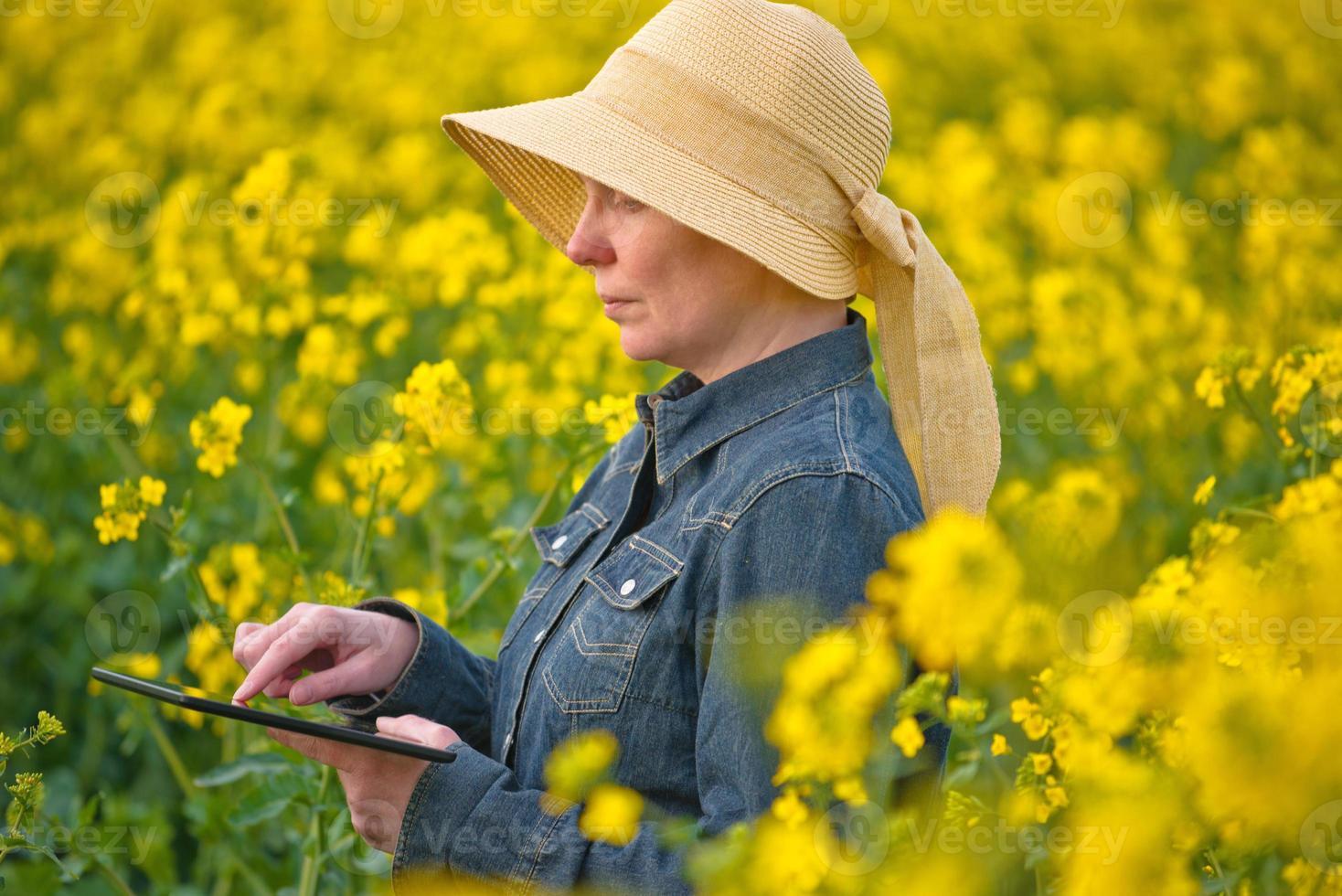 kvinnlig jordbrukare med digital tablet i odlad rapsfrö foto