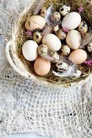 ägg i vintage korg foto