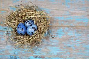 påskdekorationer. ägg i bon på träbakgrund foto