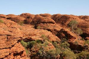 kungarnas nationalpark, Australien