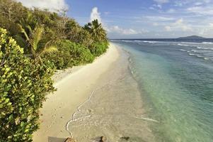 öde tropisk ö strand turkos hav lagun palmträd foto