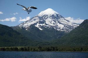 vulkan lanin nationalpark, patagonia, argentina foto