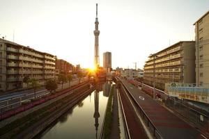 utsikt över Tokyos himmelträd foto