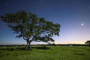 stjärnor på natten foto