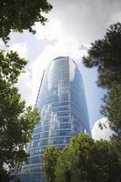 skyskrapor och träd foto