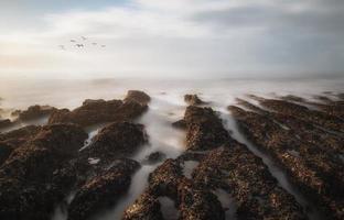 dimma bank till sjöss med solen bryter igenom foto