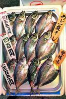 fisk som visas på en japansk marknad foto