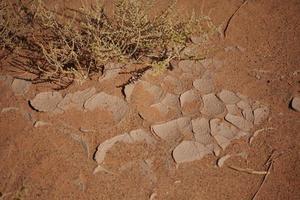 trockenheit in der wüste sahara foto