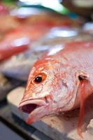 lapu-lapu, röd snapper och tonfisk, skaldjur på marknaden foto