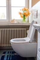 lyxig toalett foto