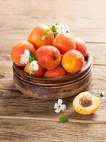 färska aprikoser foto